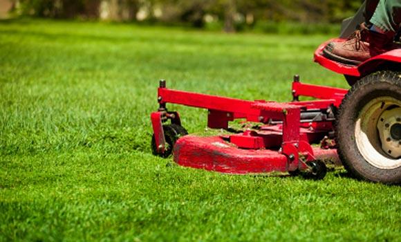 landscape lawn service